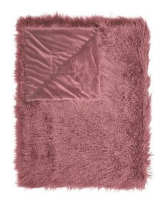 ESSENZA Vita Rosette Plaid 140 x 200 cm