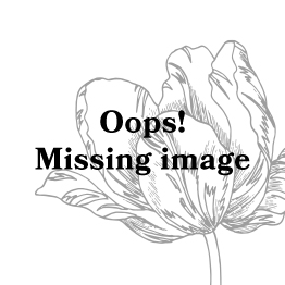 ESSENZA Fleur Burgundy Sierkussen 50 x 50 cm