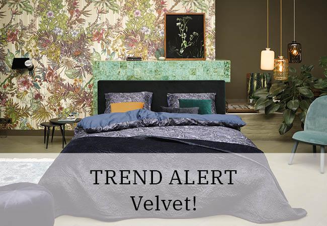 Trend alert: Velvet!